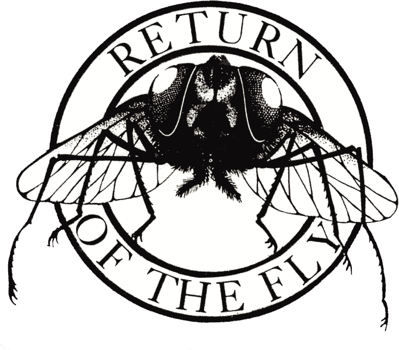 returnfly
